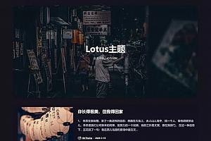 WP暗黑极客自媒体资讯博客主题Lotus1.1